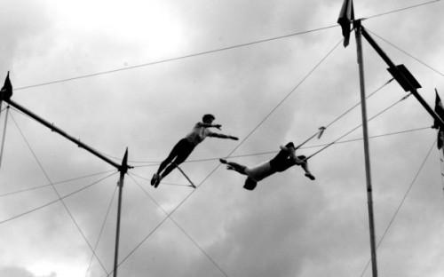 acrobat_by_catemcg123
