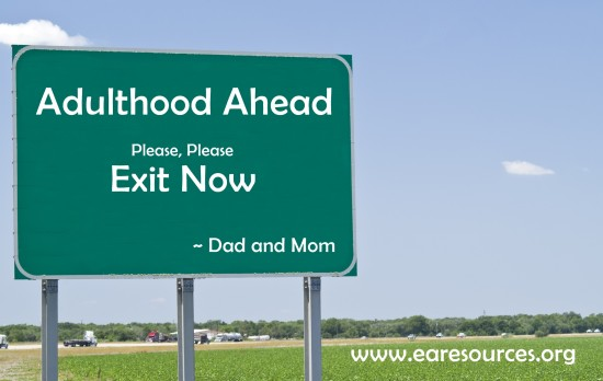A roadside billboard or traffic sign with nothing on it.