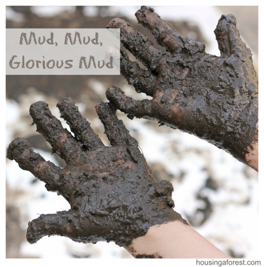 Mud-Mud-Glorious-Mud