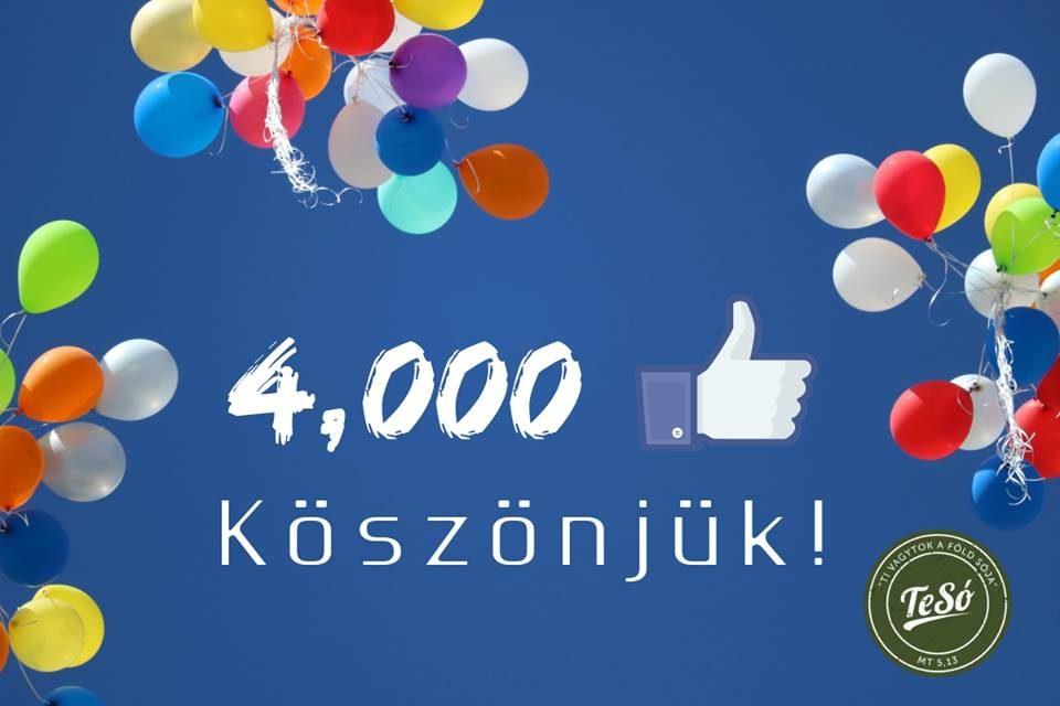 4000 lájkoló